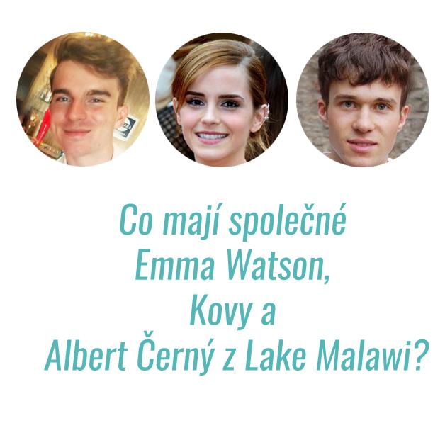 Co mají společného Emma Watson, Kovy a Albert Černý z Lake Malawi?